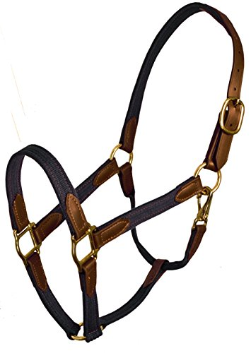 Perris Leather Beta and Cotton Safety Halter, Navy/Brown, - Leather Cotton Perris