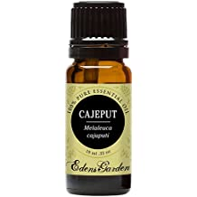 Cajeput 100% Pure Therapeutic Grade Essential Oil by Edens Garden- 10 ml