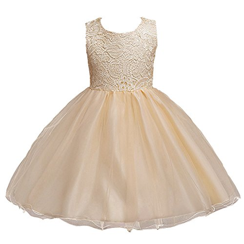 21KIDS Baby Girls Tulle Lace Flower Bridesmaid Gown Backless Dress with Bow for Party (Lace Tulle)
