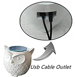 BFF For Alexa- Owl Statue Crafted Guard Station For Amazon Echo Dot 2nd And 1st generation Speaker,Jam Classic Speaker