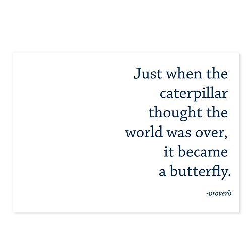 - CafePress Caterpillar Proverb Postcards (Package of 8), 6