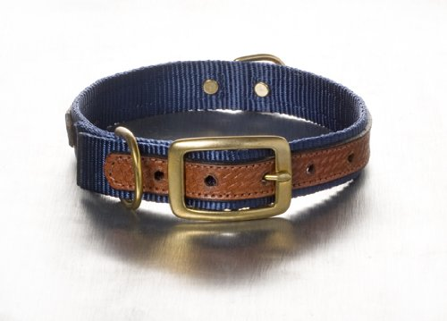 Woofwerks Cooper Overlay Collar, 1 by 18-Inch, Navy