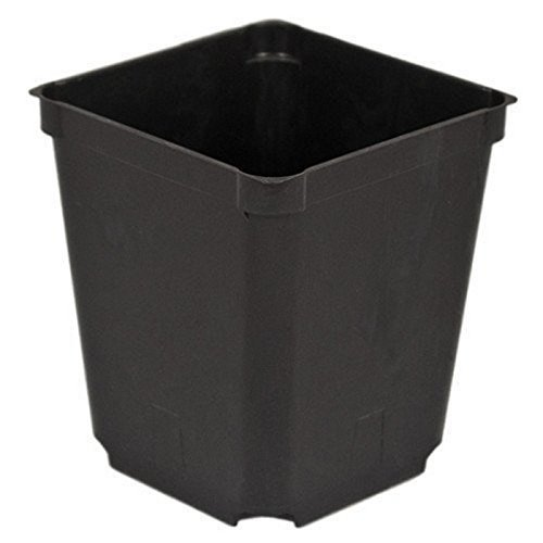 McConkey Square Nursery Pot, Case of 60 Plastic Nursery