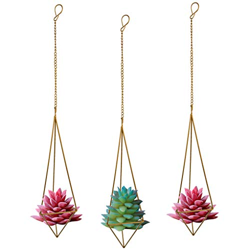 Nydotd 3 Pack Hanging Air Plant Holder Himmeli for Tillandsia Airplants Display (with Chains), Rustic Style Freestanding Wall Hanging Geometric Metal Tillandsia Air Plants Rack (Bronze - Triangular)