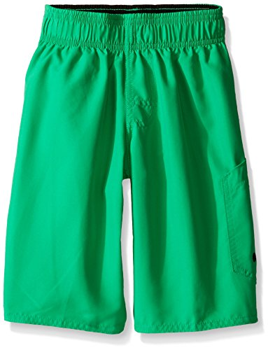Speedo Boys Marina Volley Short Swim Trunk, Algae Green, Large