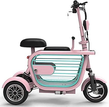 AA100 Plegable eléctrico de Tres Ruedas, Adulto Scooter eléctrico, Ligero Ancianos discapacitados Ocio al Aire Libre Triciclo eléctrico 48V / 13Ah / millaje 45 km / + Jaula del Animal doméstico