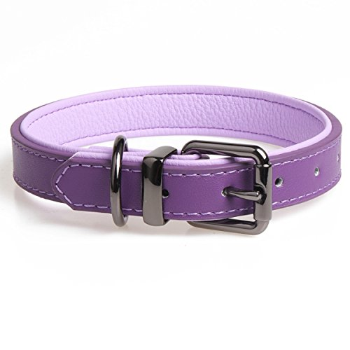 chede Leather Padded Dog Collar-Luxury Real Leather for small Medium Large dogs