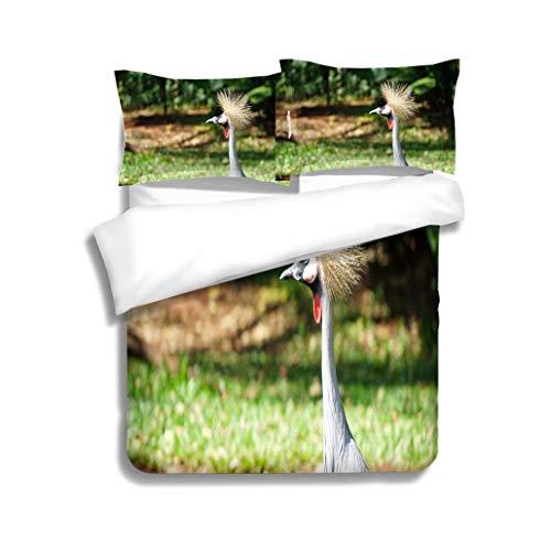 MTSJTliangwan Family Bed Grey Crowned Crane Bird 3 Piece Bedding Set with Pillow Shams, Queen/Full, Dark Orange White Teal Coral