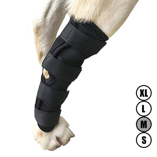 Dog ACL Brace for Torn acl Dog Hock Brace for Dog Ankle,Hock Joint Leg Brace for Dogs Relieve Pain from Operation/Arthritis,Comfortable Soft Canine Leg Joint Wrap Bandage Protects Wounds/Injury(M)