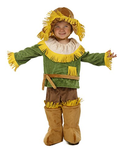 [Princess Paradise Baby's The Wizard Of Oz Scarecrow Cuddly Costume, Multi, 6 to 12 months] (Cuddly Lion Baby Costumes)
