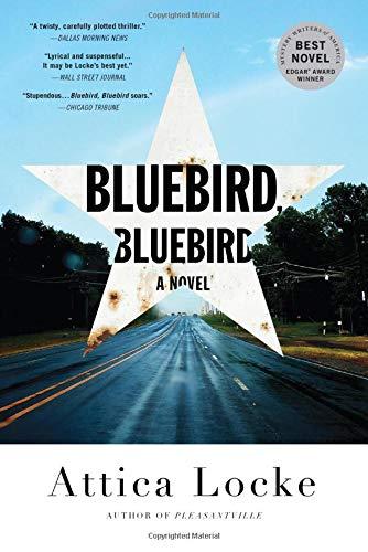 Bluebird, Bluebird (A Highway 59 Mystery)