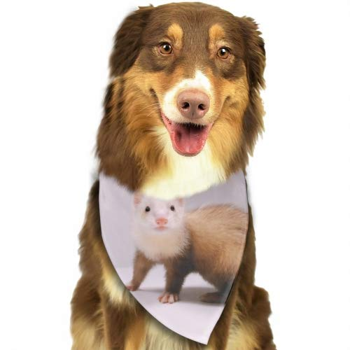 Cecil Beard Dog Bandana Triangle Bibs Ferret Adorkable Bright Coloured Scarfs Accessories for Pet Cats and Baby Puppies