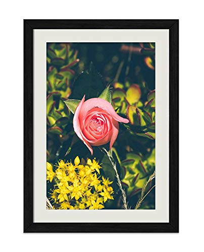 1 Dz Yellow Roses - DZ.HAIKA Yellow Flowers One Pink Rose - Natural Scenery Art Print Home Decor Wooden Frame Poster(Black Frame Vertical 16x24inch)