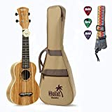Hola! Music HM-121ZW+ Deluxe Soprano Ukulele Bundle with Aquila Strings, Padded Gig Bag, Strap and Picks - Zebrawood