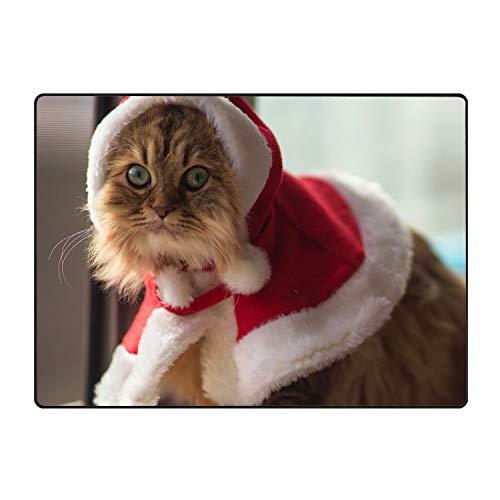 Hotspot Stylish Custom Home Cat Costume Furry Decorative Floor Mat Kitchen,Bathroom Doormat Entry -