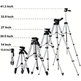 Perfect Nova (Device Of Man) PNCT-3110 Portable Adjustable Camera Stand & Quick Release Plate for Video Cameras and Mobile Tripod (Silver, Supports Up to 3000)