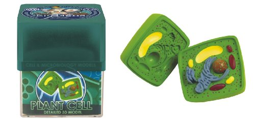 Ein-O Science BioSigns Plant Cell