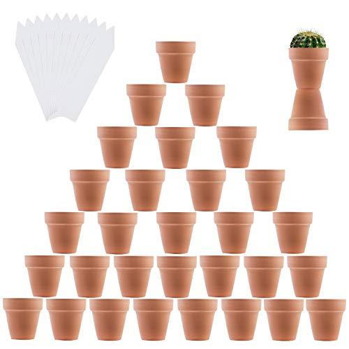 (Elcoho 32 Pieces Mini 2 .5 Inch Terra Cotta Flower Pots Cactus and Succulent Plants Terra Cotta Pots and 40 Pieces Plant Labels)