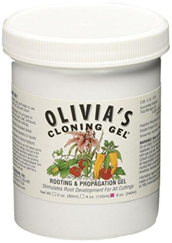 (Olivia's Solution OCG8 8-Ounce Olivia's Cloning Gel for Plants)