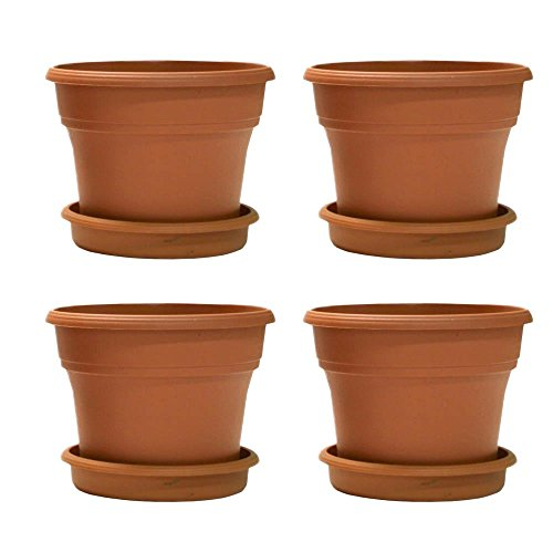 terracycle-recycled-plastic-pot-saucer-case-of-4-8-terracotta-color