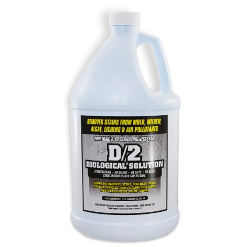 Remove Masonry Stain (D/2 Biological Solution)