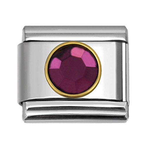 February Birthstone Italian Charm - Birthstone Italian Charms by Month 9 mm Stainless Steel Bracelet Link (February)