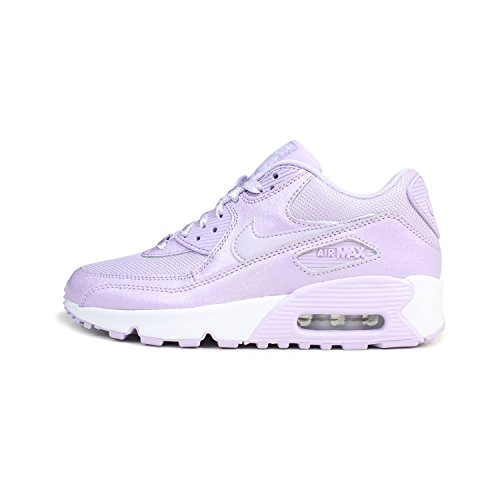 Zapatillas De Deporte Nike Air Max 90 Se Mesh Gs Running 880305 Zapatillas De Deporte Zapatos Violet Mist 500