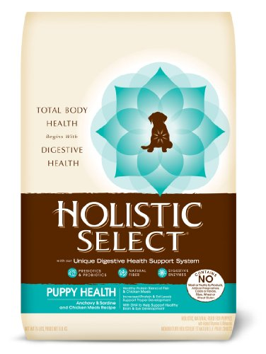 Holistic Select Natural Anchovy 15 Pound