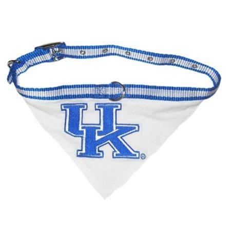 Kentucky Wildcats Bandana - Medium