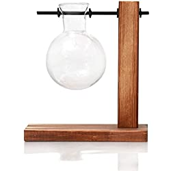 SODIAL Hydroponic Plant Display Bulb Vase in Wooden Flower Pots Plant Glass Container with Wooden Stand Office and Home Desktop Decoration A