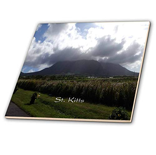 3dRose Cruise Ship Sites - Image of A Volcano On St Kitts - 8 Inch Ceramic Tile (ct_290373_3)