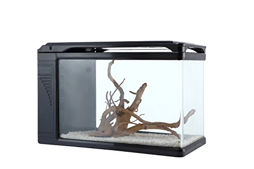 Camry Q3-400 Curved corner glass aquarium, 6 gallon aquarium tank with build in LED light glass fish tank (View amazon detail page) by CAMRY
