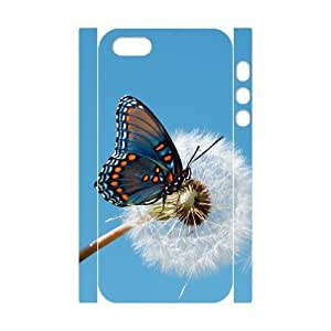 3D Bumper Plastic Customized Case Of Butterfly for iPhone 5,5S wangjiang maoyi