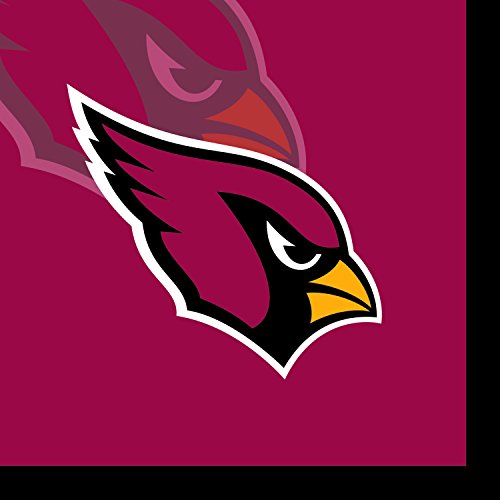 Creative Converting 16 Count Arizona Cardinals Beverage Napkins