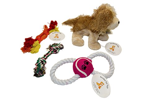 Everlast Pet Toys | Plush Doll & Rope Bundle For Dogs | Pet Bed Stuffed Animal | Figure 8 Puller | Guaranteed | Teether Bone Rope | Double Knot Chewer | Top Rated - #1 Seller | For All Breeds