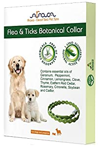 Arava Flea and Tick Prevention Collar