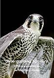 Understanding Falconry DVD