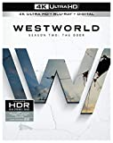 Westworld Season 2: The Door (Limited Edition 4K Ultra HD) [Blu-ray]