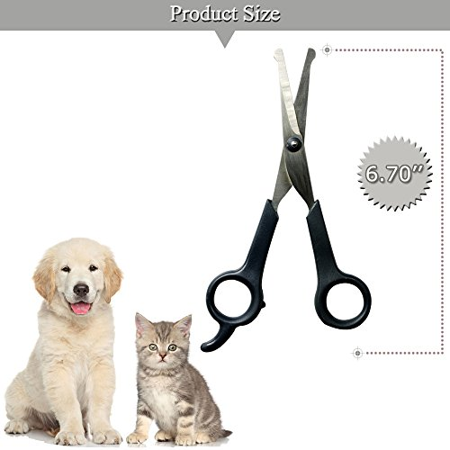 Professional-Pet-Grooming-Scissor-with-Round-Tip-Top-Quality-Stainless-Steel-Dog-Eye-Cutter-for-Dogs-and-Cats-Professional-Grooming-ToolSize-670-x-26-x-043