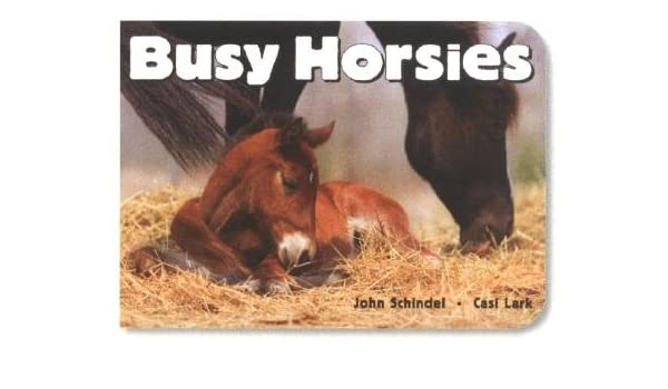 busy horsies a busy book