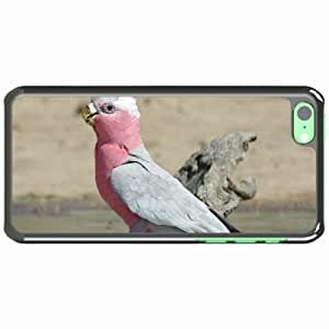 iPhone 5C Black Hardshell Case galah parrot beautiful Desin Images Protector Back Cover