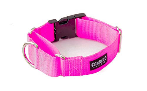 2 Inch Martingale w/Buckle Dog Collars - Heavy Duty Nylon (2'' width dog collars (Hot Pink, Medium) by Caninus Collars