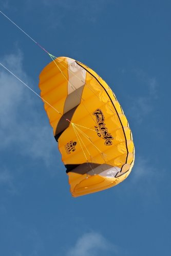 HQ Kites Rush IV 250 Power Kite by HQ Kites and Designs