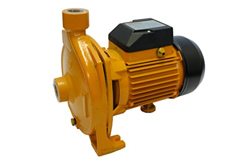 0.75 Hp Centrifugal(sprinkler) Electric Clean Water Pump 110v/220v Garden Pumping (Pump Water Centrifugal compare prices)