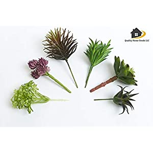 Artificial Faux Assorted Plant Succulents - Pack of 6 Small Mini Decorative Fake Flower Home Decor Pick for Indoor or Outdoor Garden, Terrarium, Aquarium, Large Pot, or Wall Planter Hanger (Spring) 5