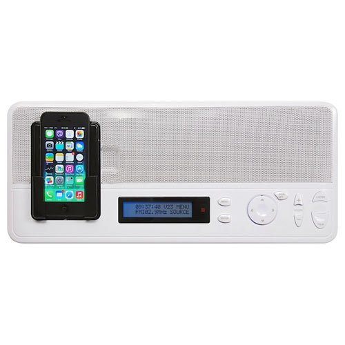 Intrasonic Technology IST I2000 Music & Intercom Master Station, White (I2000M)
