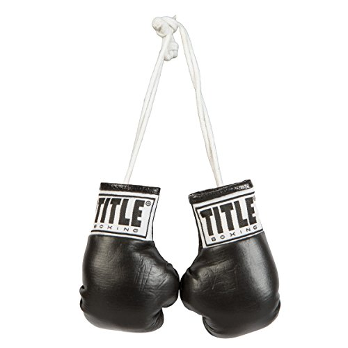 TITLE Boxing Mini Boxing Glove – DiZiSports Store
