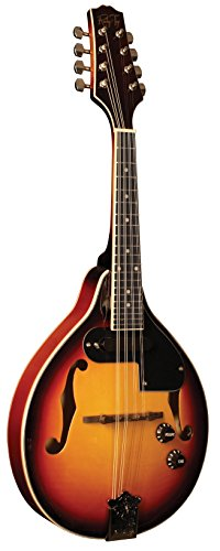 Morgan Monroe RT-M1E Mandolin , by Morgan Monroe