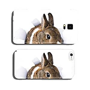 rabbit looks through a hole in paper cell phone cover case iPhone6 Plus
