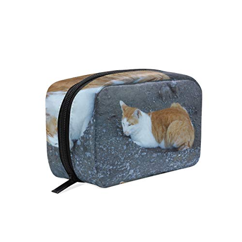 (Cosmetic Makeup Bag Pouch Cat Snow Nose Whiskers)